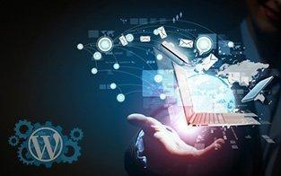 Um Desenvolvedor WordPress oferecendo soluções tecnológicas